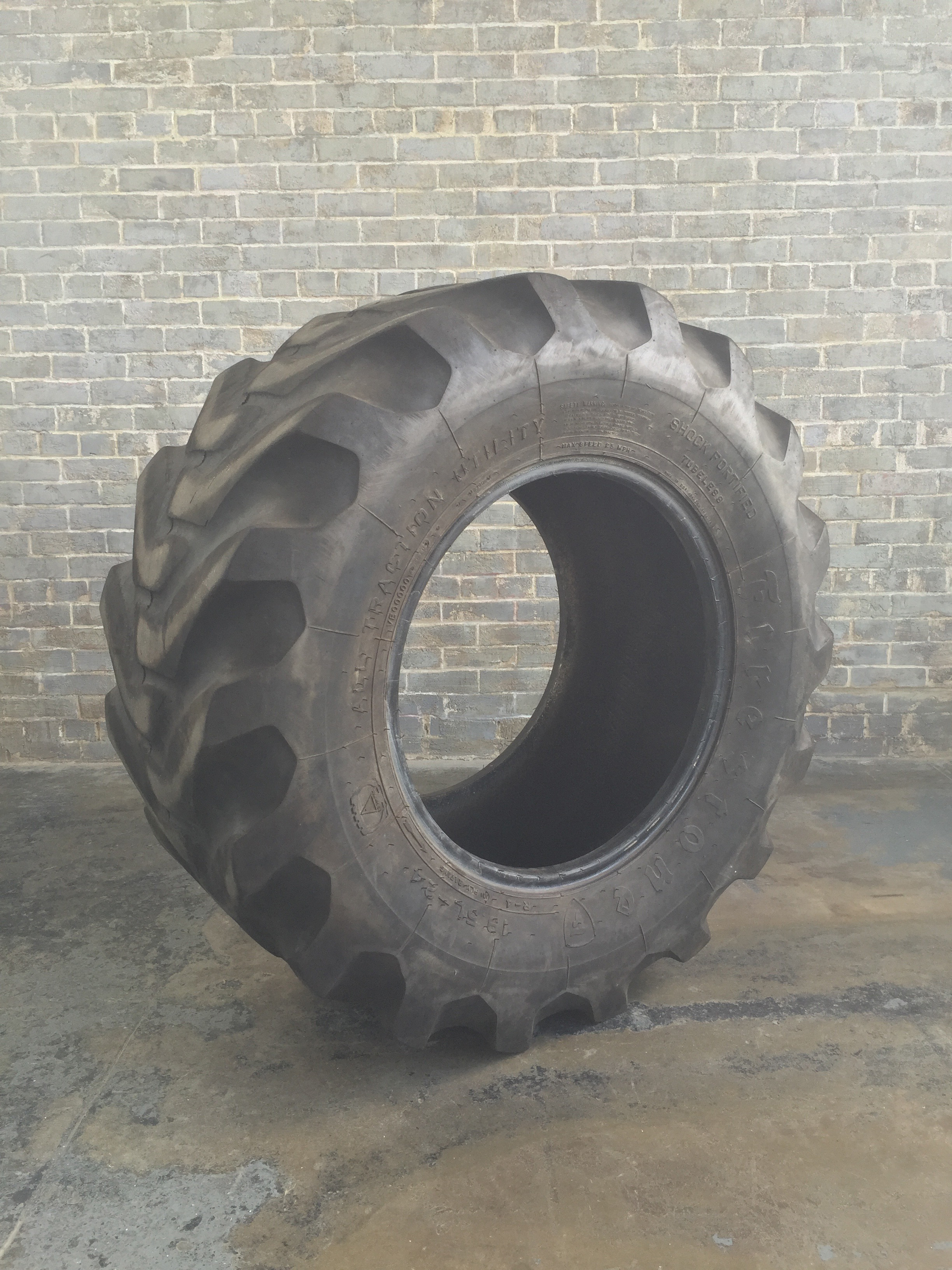 Large Tractor Wheels : Extra large crossfit tractor tires sp
